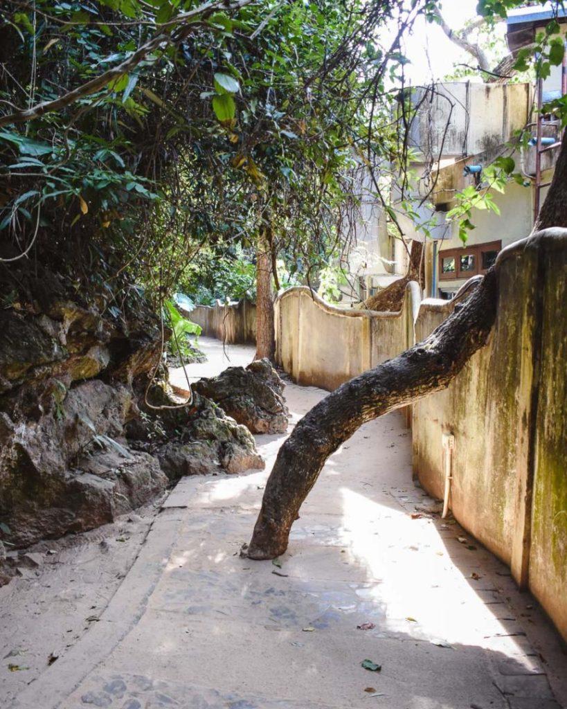 Princess Cave from railay beach