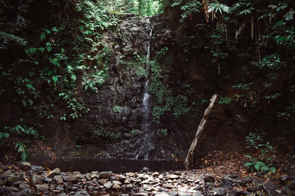 Silver falls trickling waterfall in queensland