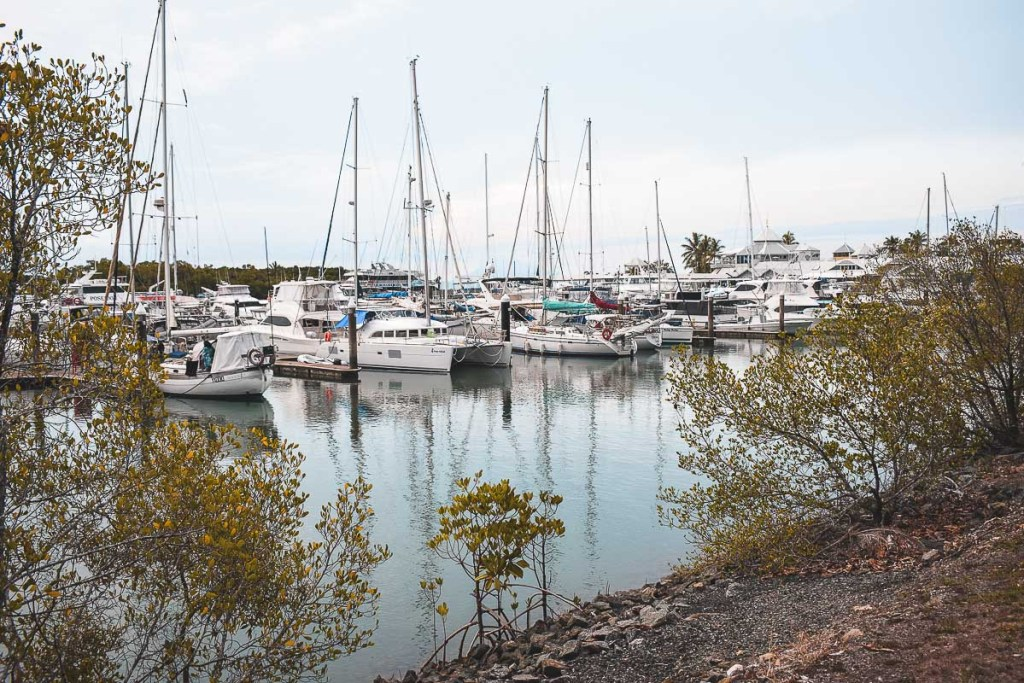 Port Douglas boats and pier