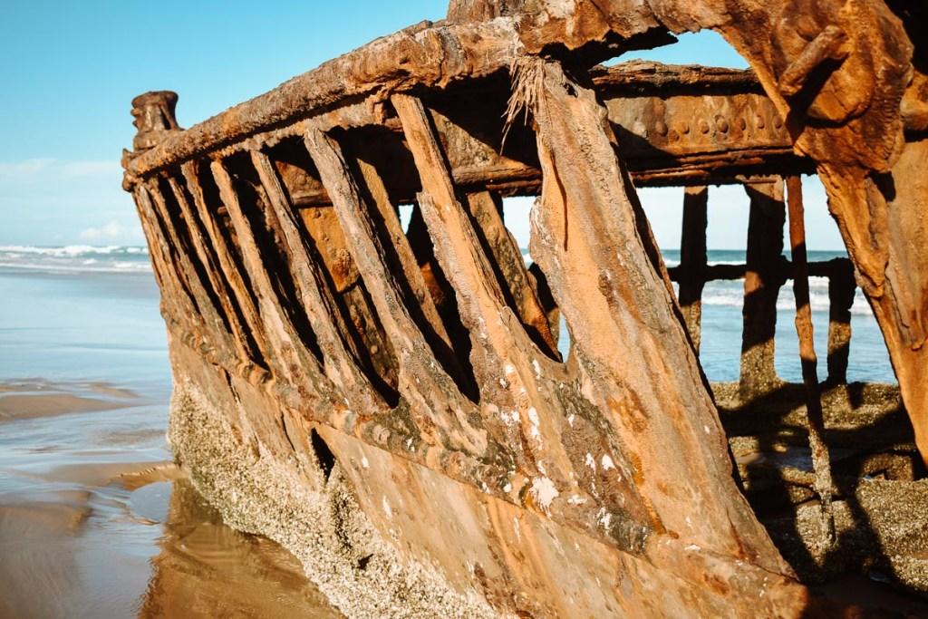 Fraser Island Shipwreck S.S Maheno