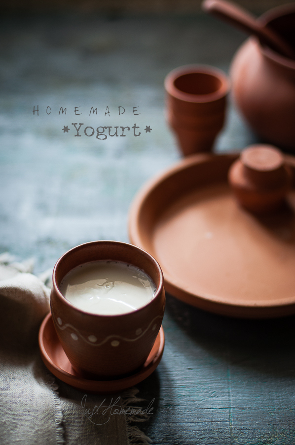 How to make Thick Homemade Yogurt with or without starter + Tips to get it right