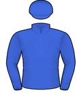hartnell silks caulfield cup 2019 godolphin silks blue army fly emirates