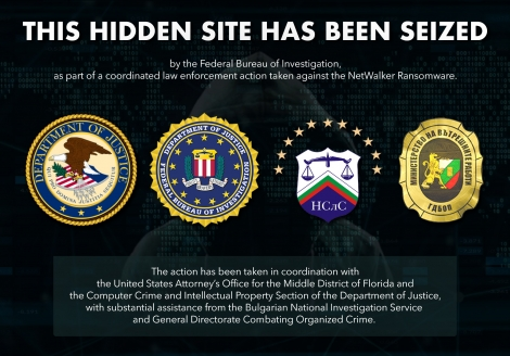 Seizure page of dark web hidden resource used to communicate with NetWalker ransomware victims