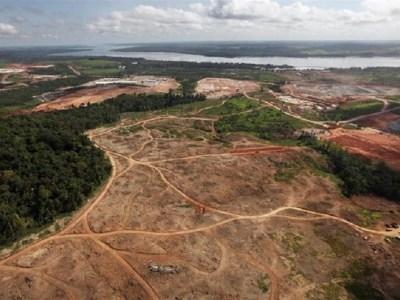 Deforestación Amazonía