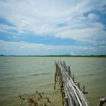 Wooded Pier