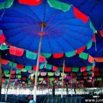Umbrellas s s s s s s s s s s