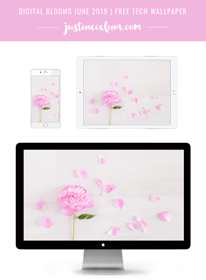 DIGITAL BLOOMS JUNE 2019 | FREE DESKTOP WALLPAPER | Free Spring 2019 Floral Desktop Wallpapers featuring a Pink Peony on a marble background | Free Pastel Floral Wallpapers for Spring | Spring / Summer 2019 Tech Wallpapers | FREE Pink Floral Tech Wallpapers | The Best FREE Spring Tech Wallpapers | Free Floral Tech Wallpapers Spring 2019 // JustineCelina.com