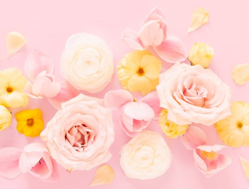 DIGITAL BLOOMS AUGUST 2020 | FREE DESKTOP WALLPAPER | A soft, feminine, pastel floral FREE Desktop Wallpaper for Summer 2020 | Pastel Pink, Lavender and Yellow Floral Tech Wallpaper for Summer | Free August Flower Tech Wallpapers | JustineCelina Summer 2020 Digital Blooms | Free Floral Desktop Wallpaper featuring White Ranunculus and Yellow Butterfly Ranunculus, refurled Blush and White Tulips and Quicksand Roses | Rose Free Tech Wallpaper | Cheerful Summer Flower Tech Wallpaper // JustineCelina.com