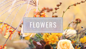 Browse JustineCelina's FLOWER post archives