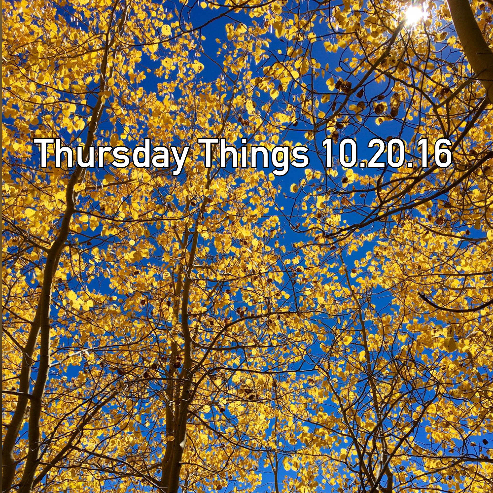 Thursday Things 10.20.16