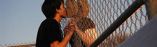 love through fence