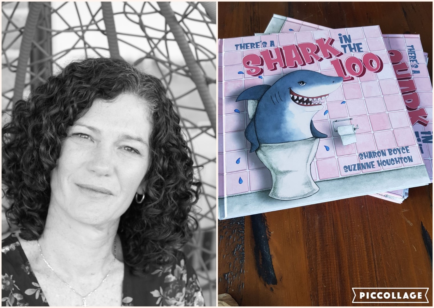 Sharon Boyce There's a Shark in the Loo
