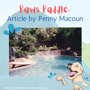 Paws Paddle: Article by Penny Macoun