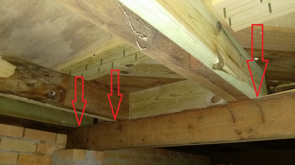 Gorgeous New Floor Joists Spanning Both Girder Beams.