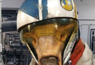 Star Wars Gli Ultimi Jedi C'ai Threnalli