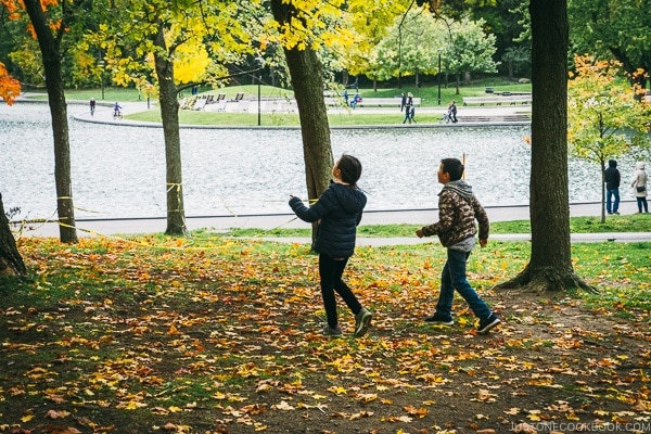 children chasing leaves at Mount Royal Park - Montreal Travel Guide | www.justonecookbook.com
