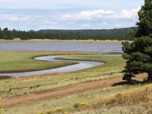 A Path to Upper Lake Mary AZ