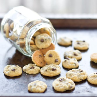 Teeny Tiny Chocolate Chip Cookies (Cookie Sprinkles)