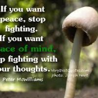 If You Want Peace Of Mind Stop Fighting With Your Thoughts