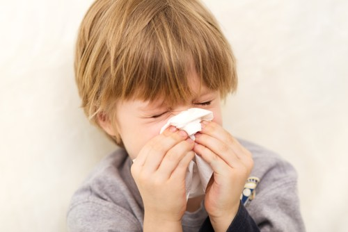 Gripe Influenza H1N1 - Just Real Moms