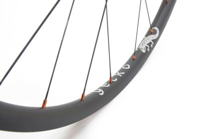 Gecko strong carbon wheels