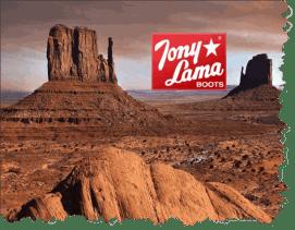 Tony Lama Desert