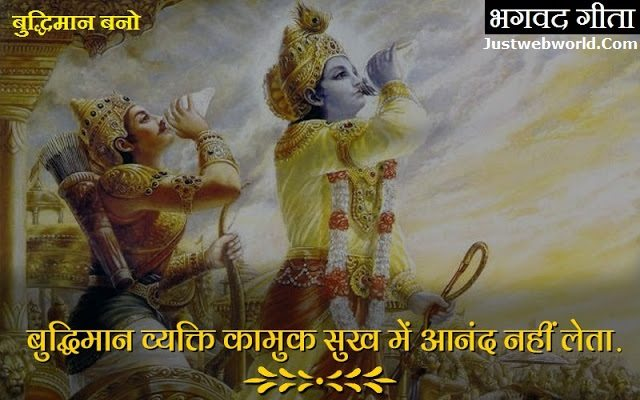 Bhagvad gita saar in hindi