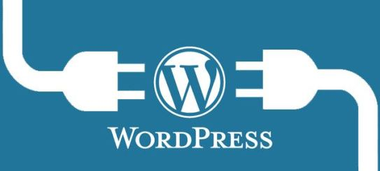 Install WordPress for starting a food blog