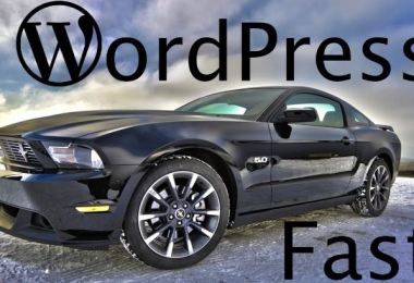 Tips to Speed Up WordPress Performance