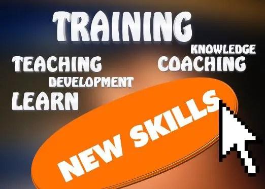 Skills You Need to Succeed