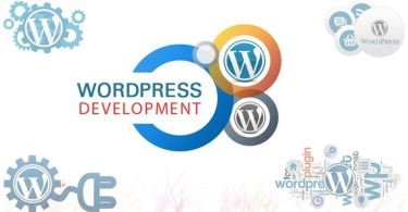 Custom WordPress Development Services