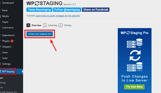 Creating WordPress Staging Website