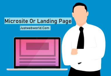 Microsite Or Landing Page