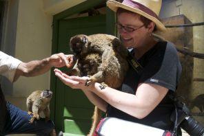 2012 Madagaskar