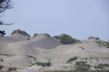 Flinke duinen