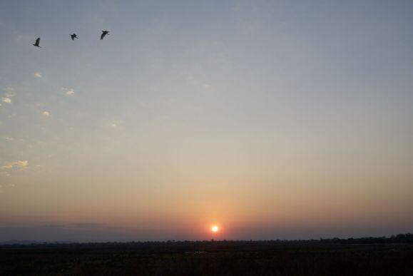 Zonsondergang vanaf de sunsetdeck
