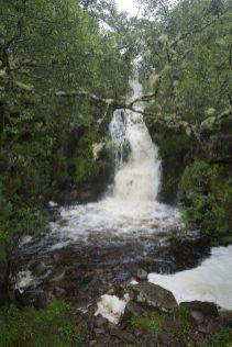 Hoogteverschillen en veel water, dan krijg je watervalletjes. Verschillende gezien vandaag.