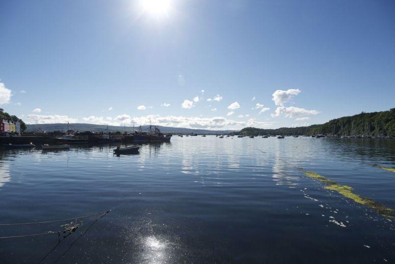 Onder een heerlijk zonnetje vertrekken we uit de haven van Tobermory op weg naar mijn favoriete dag van deze vakantie.