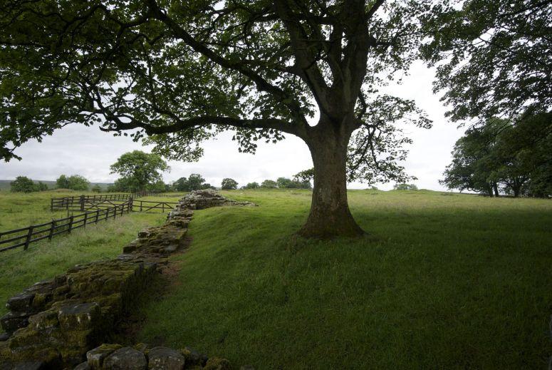 Een stukje Hadrian's wall