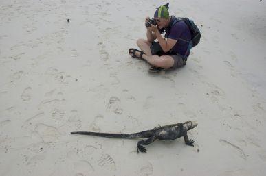 leguanen filmen op strand bij Tortuga Bay