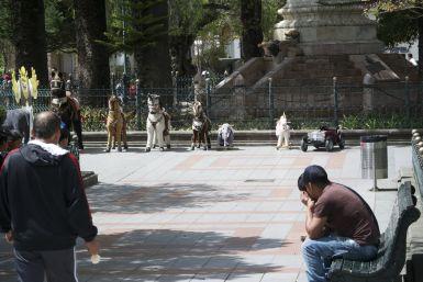 parkej in Cuenca