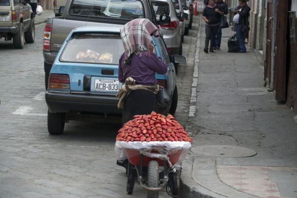 aardbeien verkopen vanuit kruiwagen