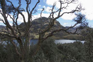 Cajas national park