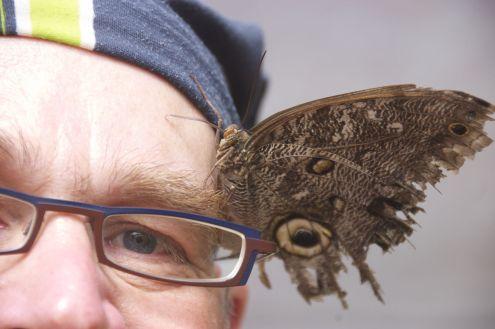 Deze uilvlinder met gehavende vleugels vond Jurjan erg lief geloof ik.