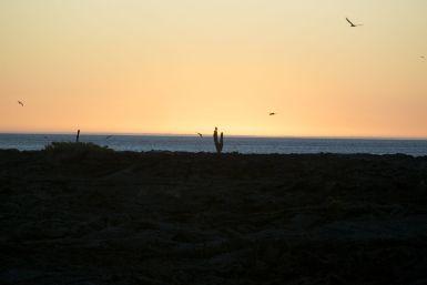 zonsondergang op de Galapagos.