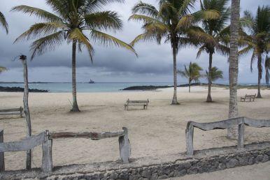 zowaar een bounty-strand