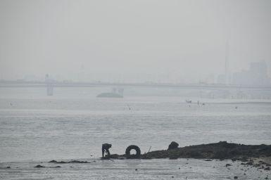 Het is vandaag een beetje grijs weer....