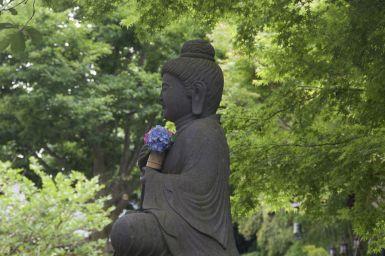 Ook hortensia's voor de Boeddha.