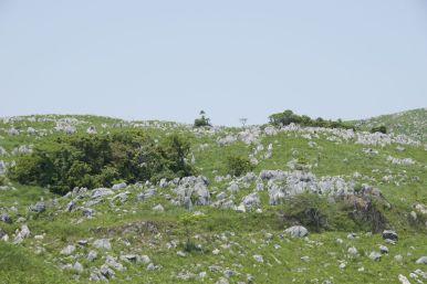 Prachtig al die rotsen die door het gras heensteken.