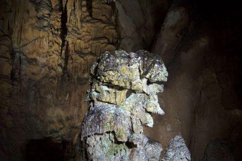 """""""King of the Cave"""". De grot is uitgelicht in gewoon wit licht. Enerzijds mooi, want je kunt alles goed zien, maar het resulteert wel in veel algengroei."""